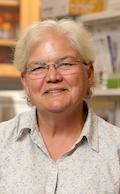 Cheryl Borgman