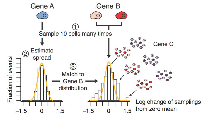 Dissecting cell-to-cell regulatory heterogeneity by stochastic profiling